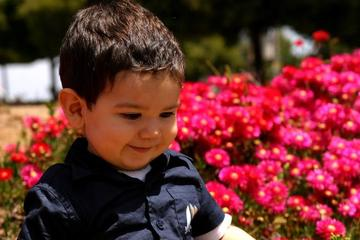 ... Toothless Boy; my nephew 5 ...
