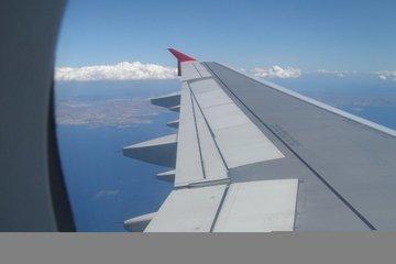 flight,avion,bird,view