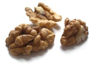 walnut,food,cut out,brown