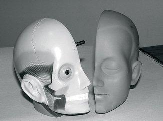 Plastic Model Head 3
