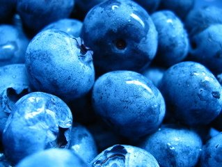 Blueberries,blueberry,blueberries,fruit
