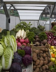 vegetables,green,market,red
