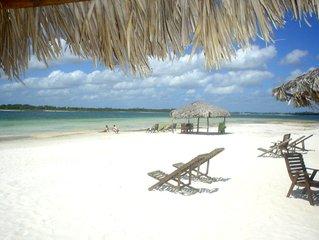 beach,paradise,clear,water