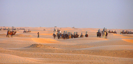 camel raiders