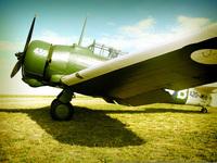 Wirraway Plane