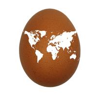 one earth one egg fragile world