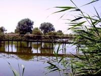 Danube delta 11