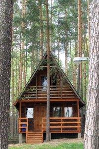 huts in jungle 2