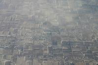 Farmers' Fields
