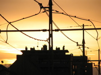 Powerlines 3