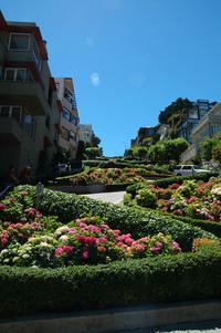 Lombard Street, San Francisco 1