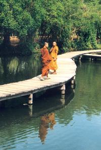 Yin Yang Monks