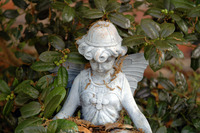 statue series 1