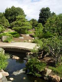 the water garden 3