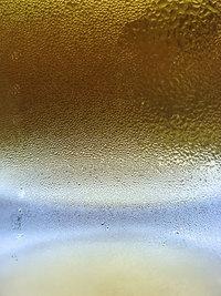 Beer Body