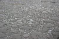Raindrops Close Up 2