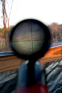 Rifle & Scope 2