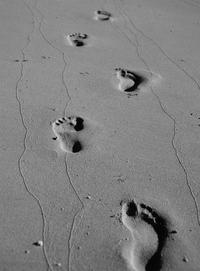 Footprints & Photographs