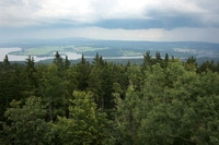 Lipno lake and forest landscape