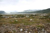 fjord 3