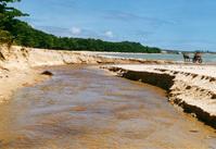 IMAGENS OF FANTASTIC CUMURUXATIBA BEACH - BAHIA/BRASIL