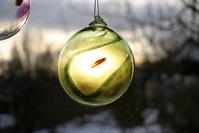 Glassbulb