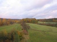 autumn evening 1