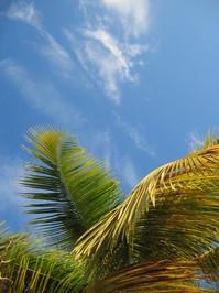 Caribbean Sky 2