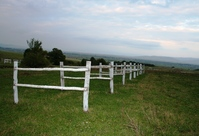 Landscape 1 2