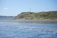 Raglan Sand Beach