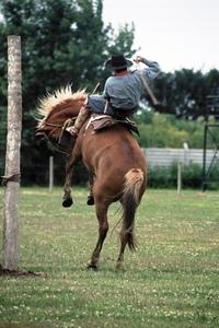 Gauchos Argentinos - La jineteada 3
