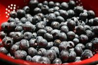 Bleu Berries