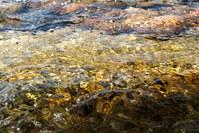 Shallow Ocean Water 1