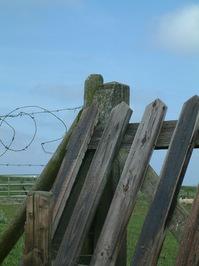 Fence at sea