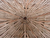 Texture umbrella of palm leaves