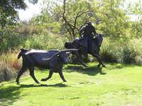 Bull Sculpture - Pioneer Park