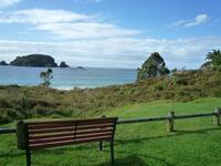 Bench facing the sea