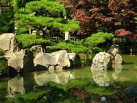 Japenese Gardens 1