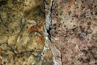 Weathered Concrete 1