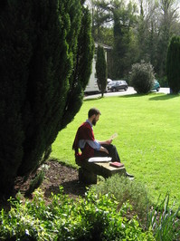 college scenery 2