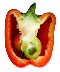 Redhot Pepper