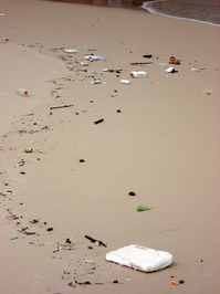 garbage on the sand
