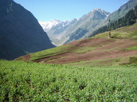 Lalazar - Naran - Pakistan 2
