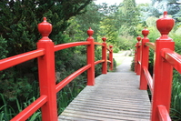 Japanes Bridge 2