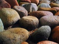 Rock plantations