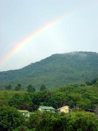 Floripa's Rainbow