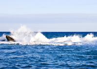 Caribbean Blue Water 4