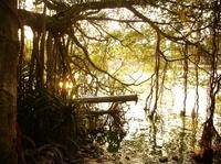 lake idyll