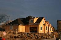 Home construction, real estate development 1