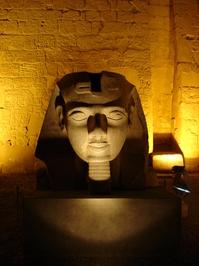 Egypt / Pyramide / Karnak / Cairo 191